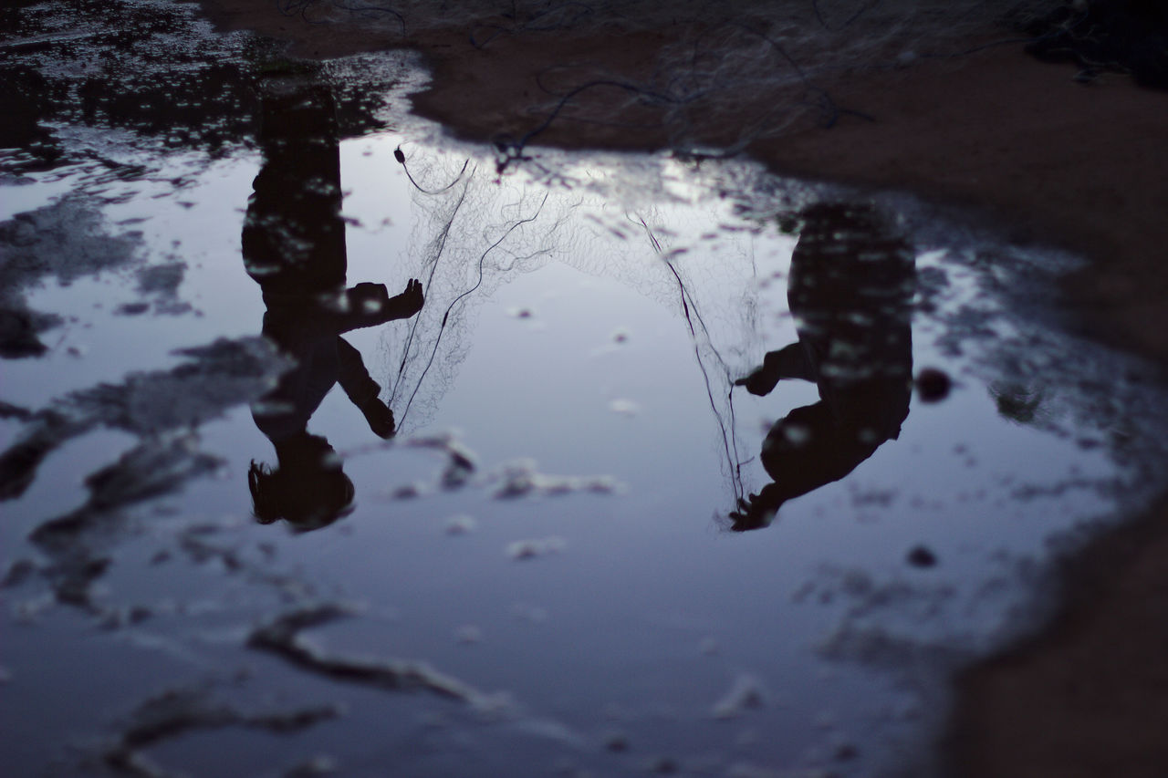 water, reflection, nature, high angle view, puddle, lake, day, outdoors, leaf, no people, plant part, animal, waterfront, wet, animal themes, tranquility, selective focus, full length