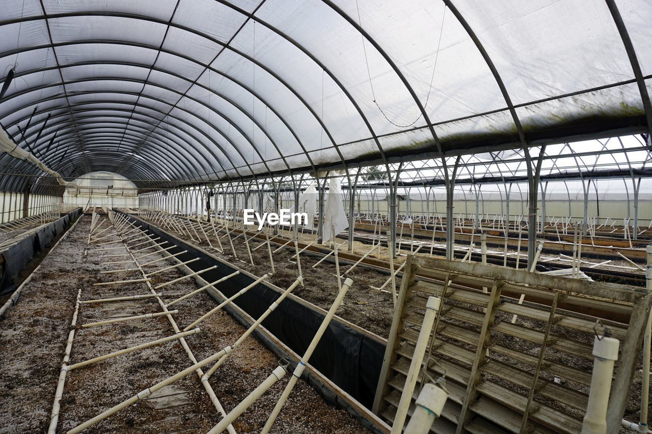 built structure, no people, architecture, transportation, metal, day, greenhouse, track, direction, railroad track, indoors, nature, diminishing perspective, in a row, the way forward, arch, connection, rail transportation, vanishing point, ceiling, plant nursery, long