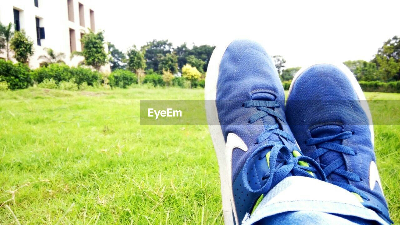shoe, grass, personal perspective, human leg, canvas shoe, human body part, day, focus on foreground, green color, outdoors, low section, blue, one person, close-up, clear sky, people
