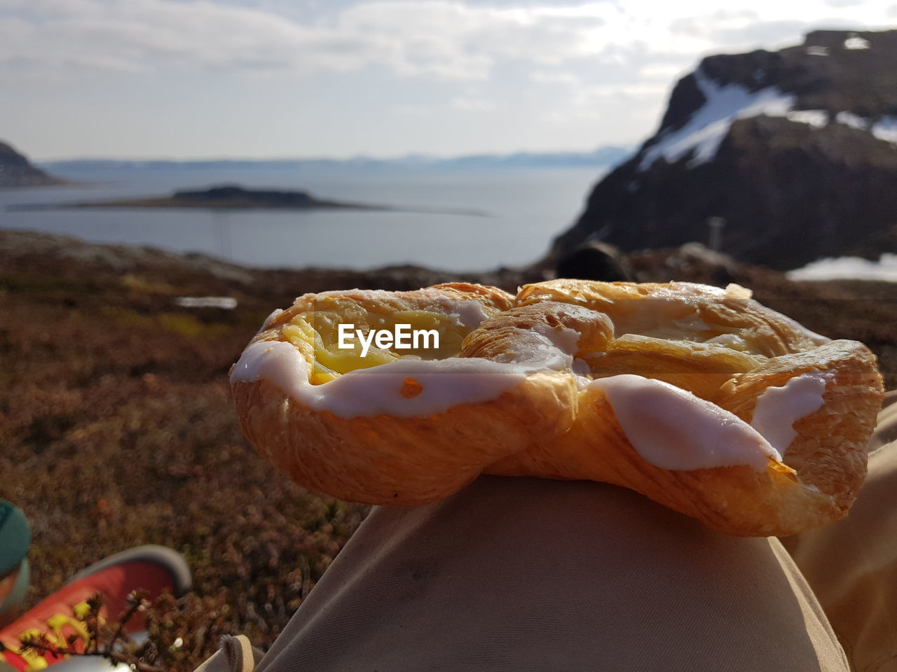 focus on foreground, close-up, day, food, food and drink, sea, water, no people, nature, sky, freshness, outdoors, cloud - sky, land, indulgence, temptation, beauty in nature, animal, ready-to-eat