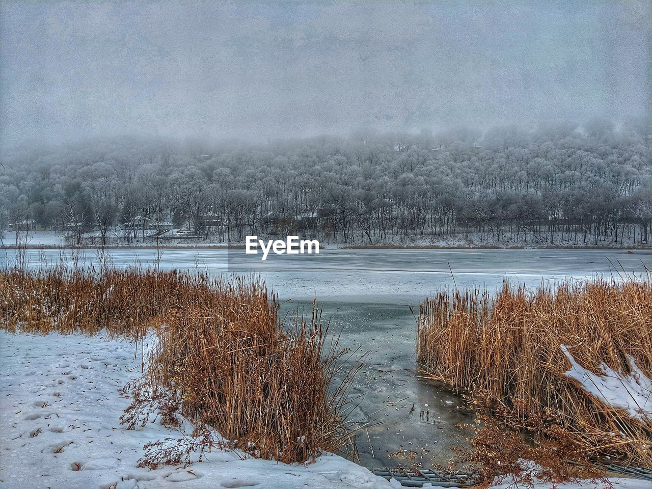 winter, cold temperature, water, tranquility, snow, tranquil scene, beauty in nature, plant, nature, scenics - nature, lake, no people, tree, frozen, sky, day, non-urban scene, land, outdoors, ice, frozen water
