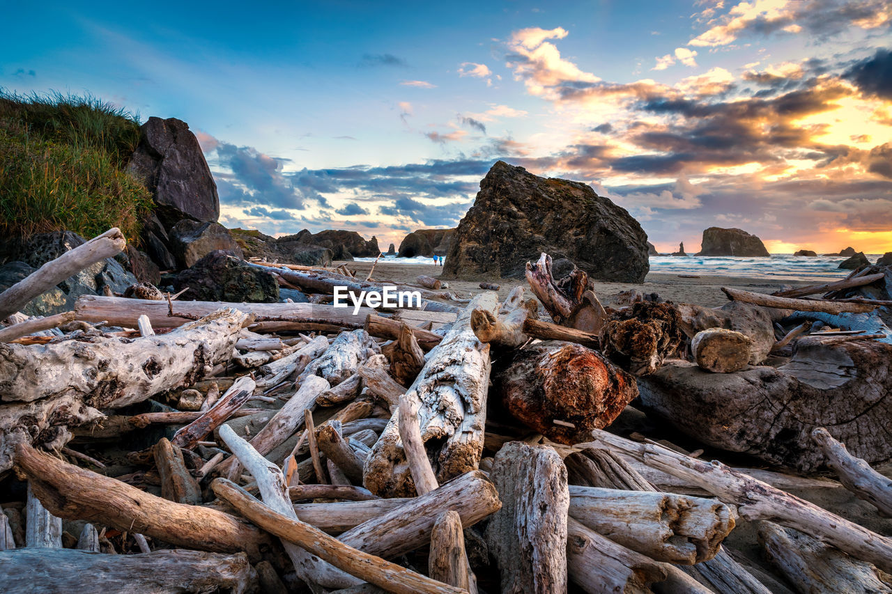 sky, rock, solid, rock - object, cloud - sky, nature, beauty in nature, no people, wood - material, tranquility, sunset, water, sea, beach, scenics - nature, land, stack, tranquil scene, non-urban scene, outdoors, driftwood