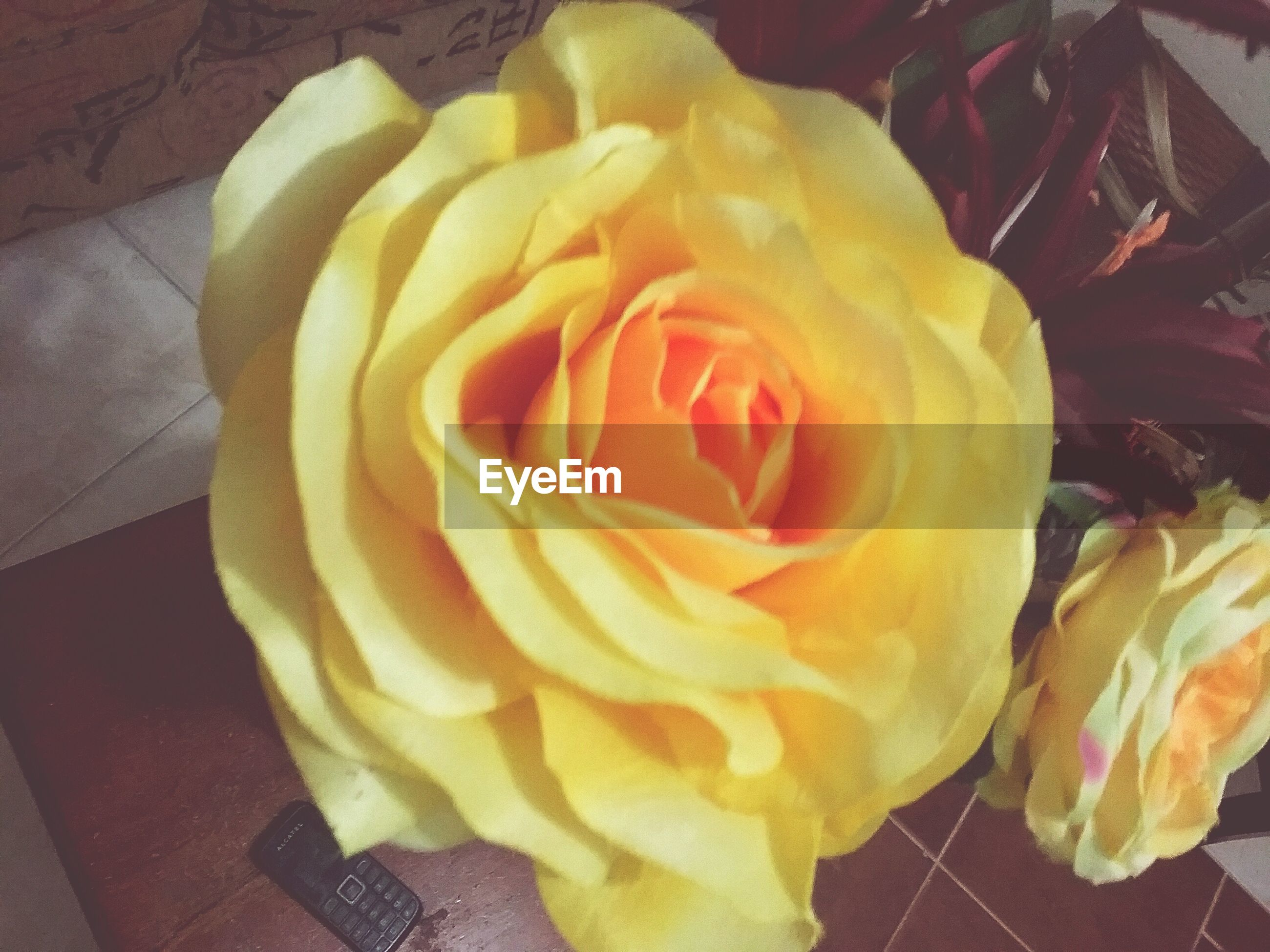 indoors, freshness, rose - flower, flower, close-up, food and drink, food, high angle view, still life, sweet food, table, petal, yellow, rose, indulgence, ready-to-eat, flower head, unhealthy eating, dessert, no people