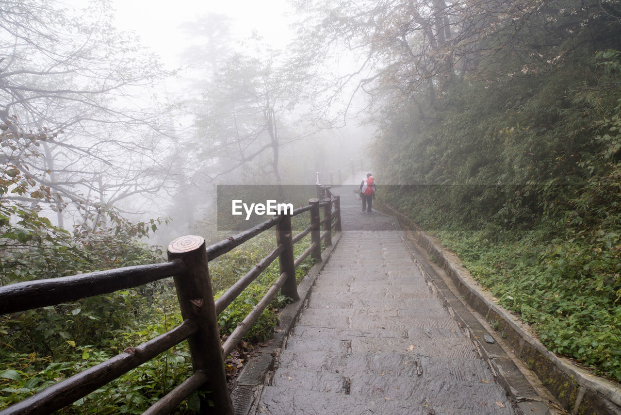 Rear View Of Person Walking On Footpath During Foggy Weather