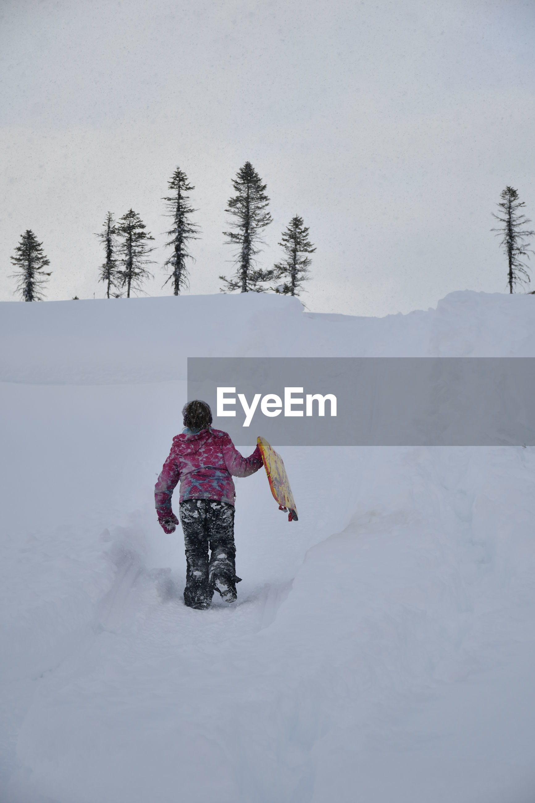 REAR VIEW OF BOY ON SNOW COVERED FIELD