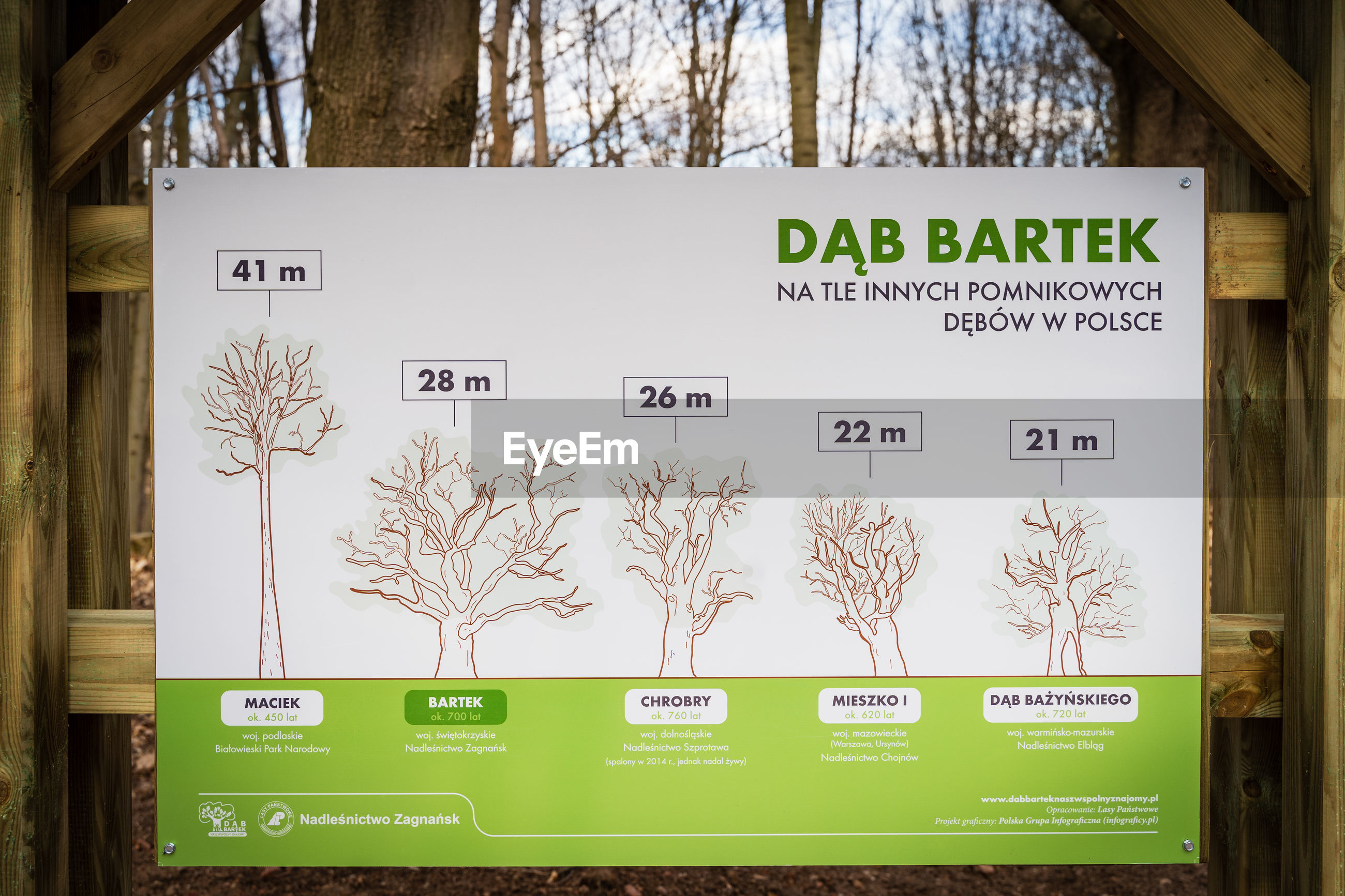 CLOSE-UP OF INFORMATION SIGN ON TREE