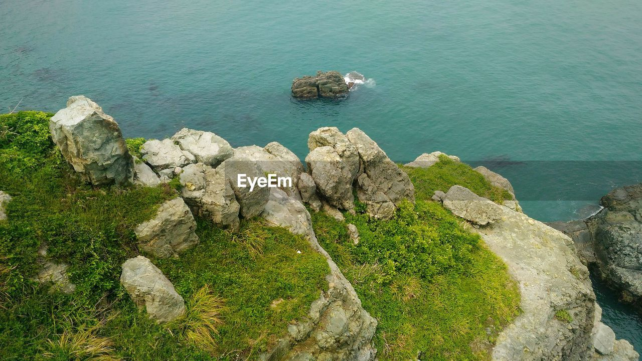 High Angle View Of Sheep On Rock By Sea