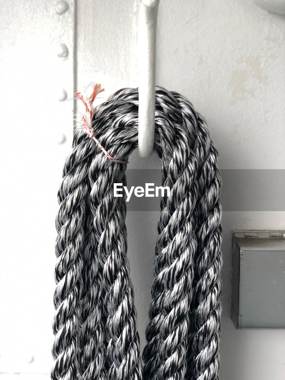 indoors, close-up, no people, wall - building feature, pattern, focus on foreground, rope, white color, day, hanging, still life, metal, strength, tied up, animal themes, string, one animal, nature, textile