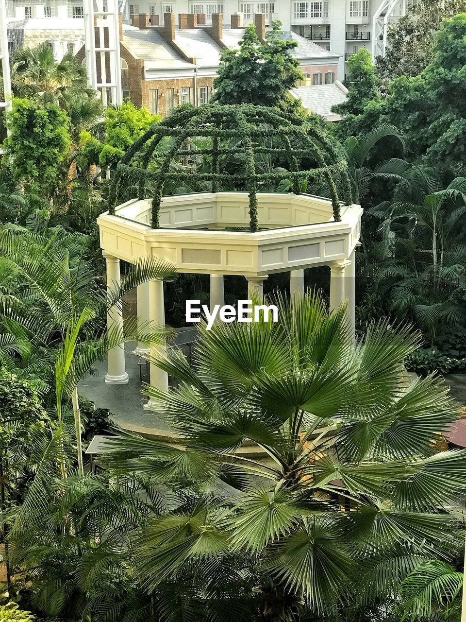 built structure, plant, architecture, growth, tree, building exterior, nature, day, green color, no people, outdoors, building, garden, formal garden, city, front or back yard, palm tree, leaf, park, luxury