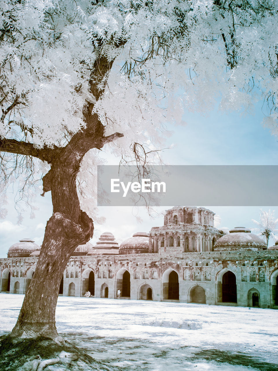 architecture, built structure, water, nature, sky, history, tree, the past, no people, day, travel destinations, arch, cold temperature, winter, plant, building exterior, ancient, outdoors, travel, architectural column, ancient civilization