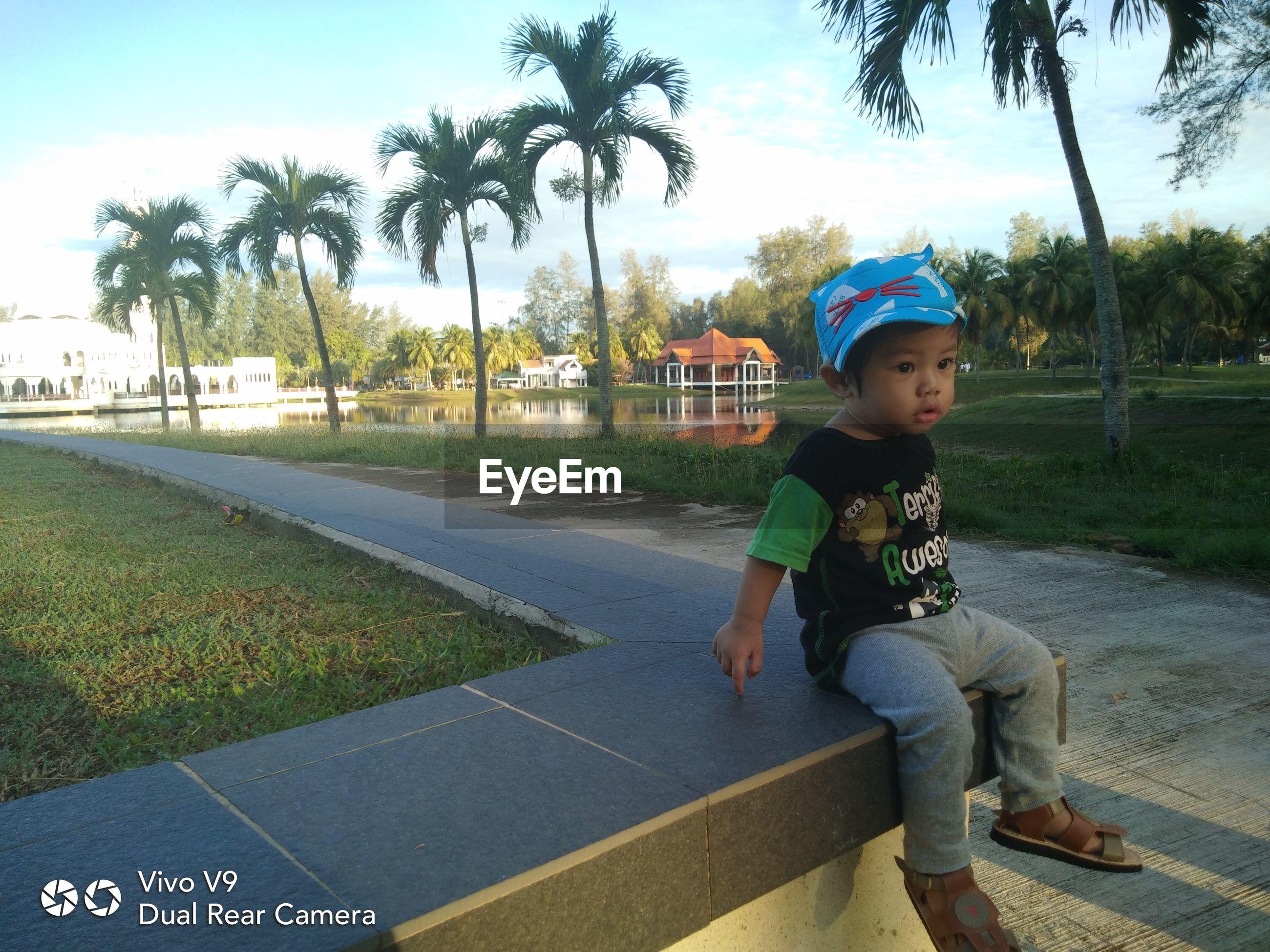 FULL LENGTH OF BOY SITTING ON PALM TREES