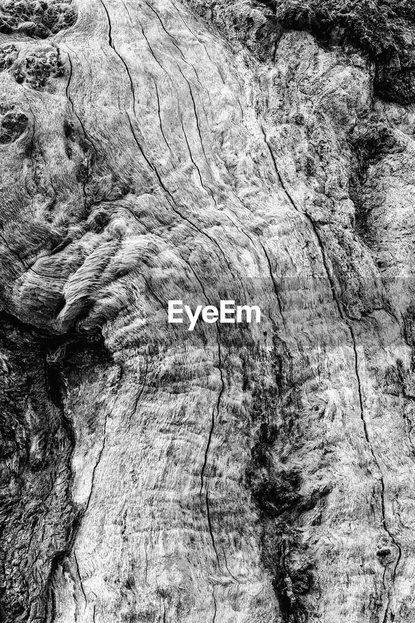 textured, pattern, tree, backgrounds, tree trunk, no people, rough, trunk, natural pattern, full frame, close-up, day, nature, wood - material, bark, plant, rock, outdoors, rock formation, rock - object, natural condition, eroded