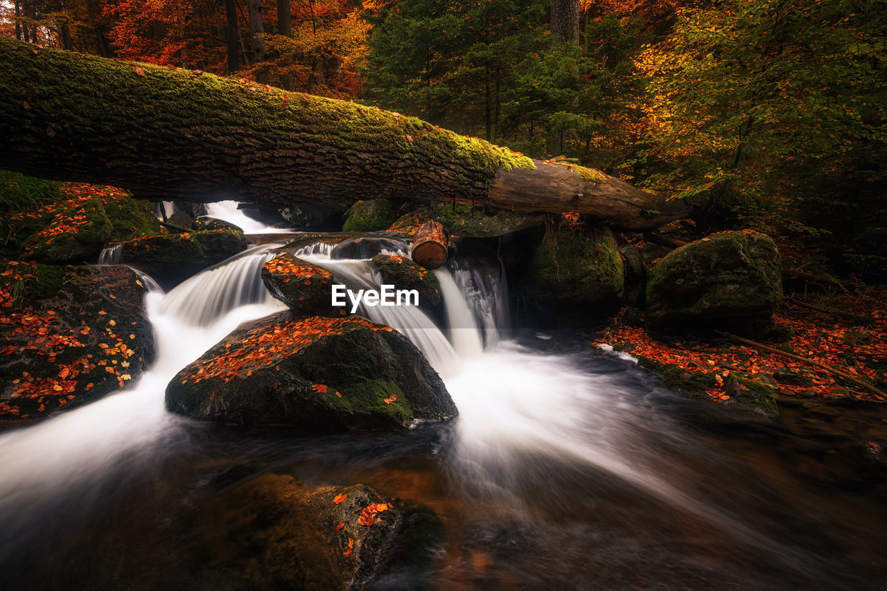 long exposure, flowing water, waterfall, scenics - nature, tree, water, motion, forest, beauty in nature, rock, plant, nature, blurred motion, rock - object, flowing, solid, no people, land, moss, power in nature, outdoors, rainforest, change, stream - flowing water