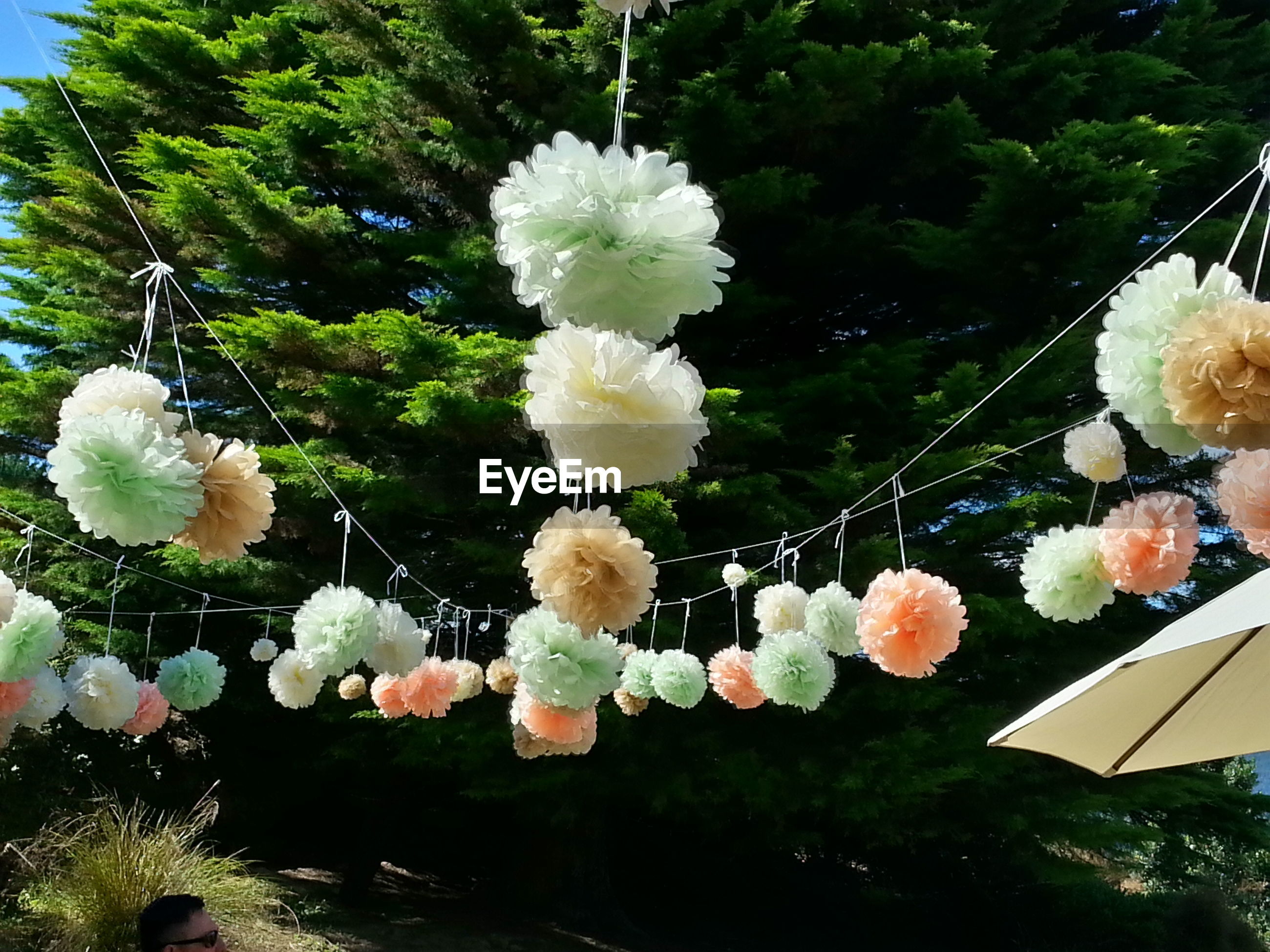 Low angle view of artificial flowers hanging at wedding ceremony on sunny day