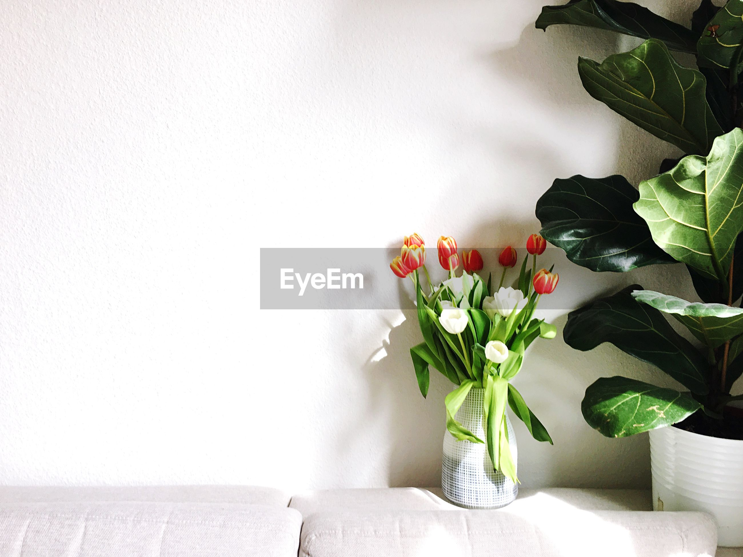 FLOWERS IN VASE ON TABLE AGAINST WALL