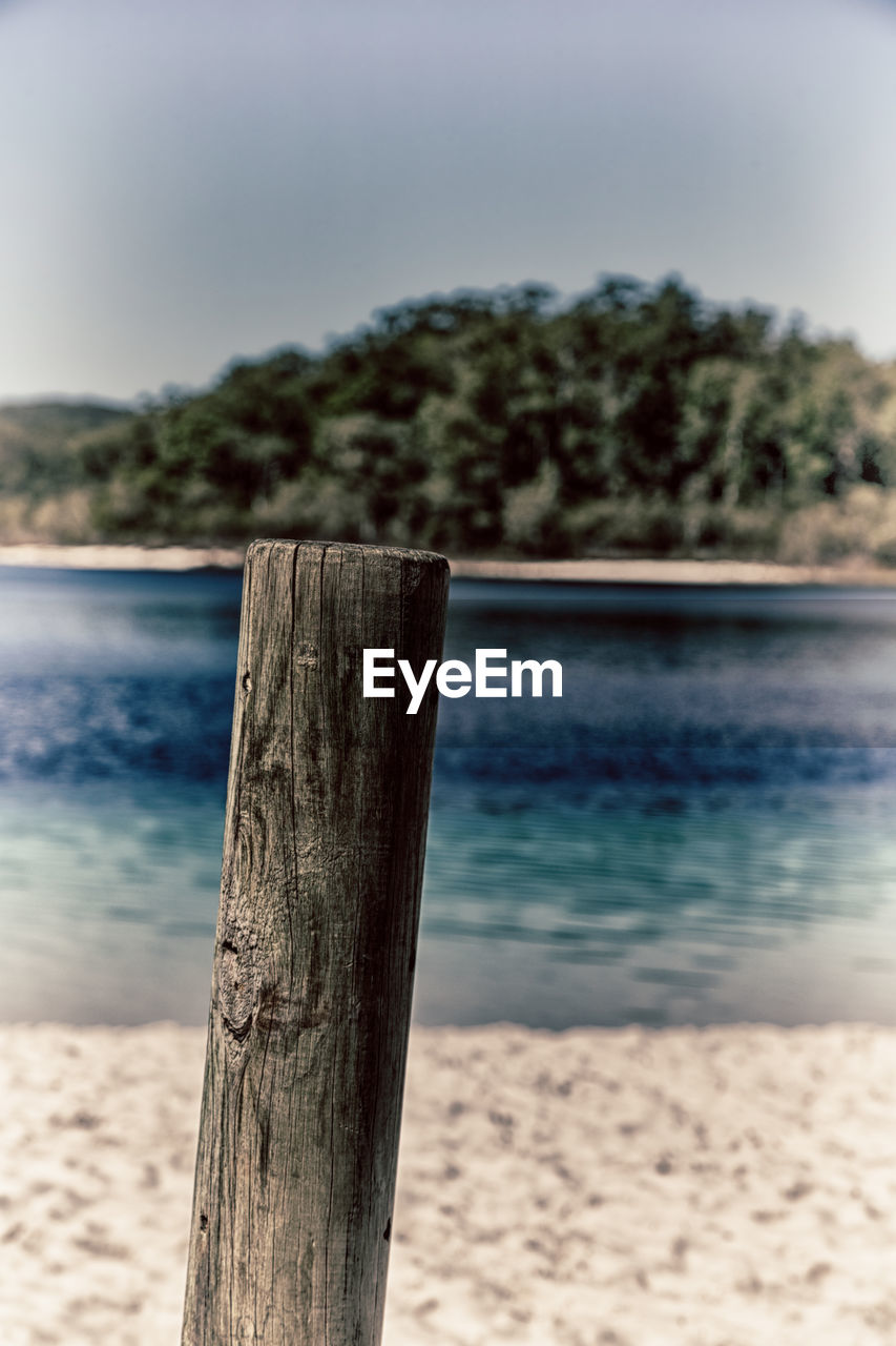 water, wood - material, focus on foreground, tree, post, land, sky, sea, nature, tranquility, wooden post, tranquil scene, scenics - nature, beach, day, no people, plant, beauty in nature, sand, outdoors