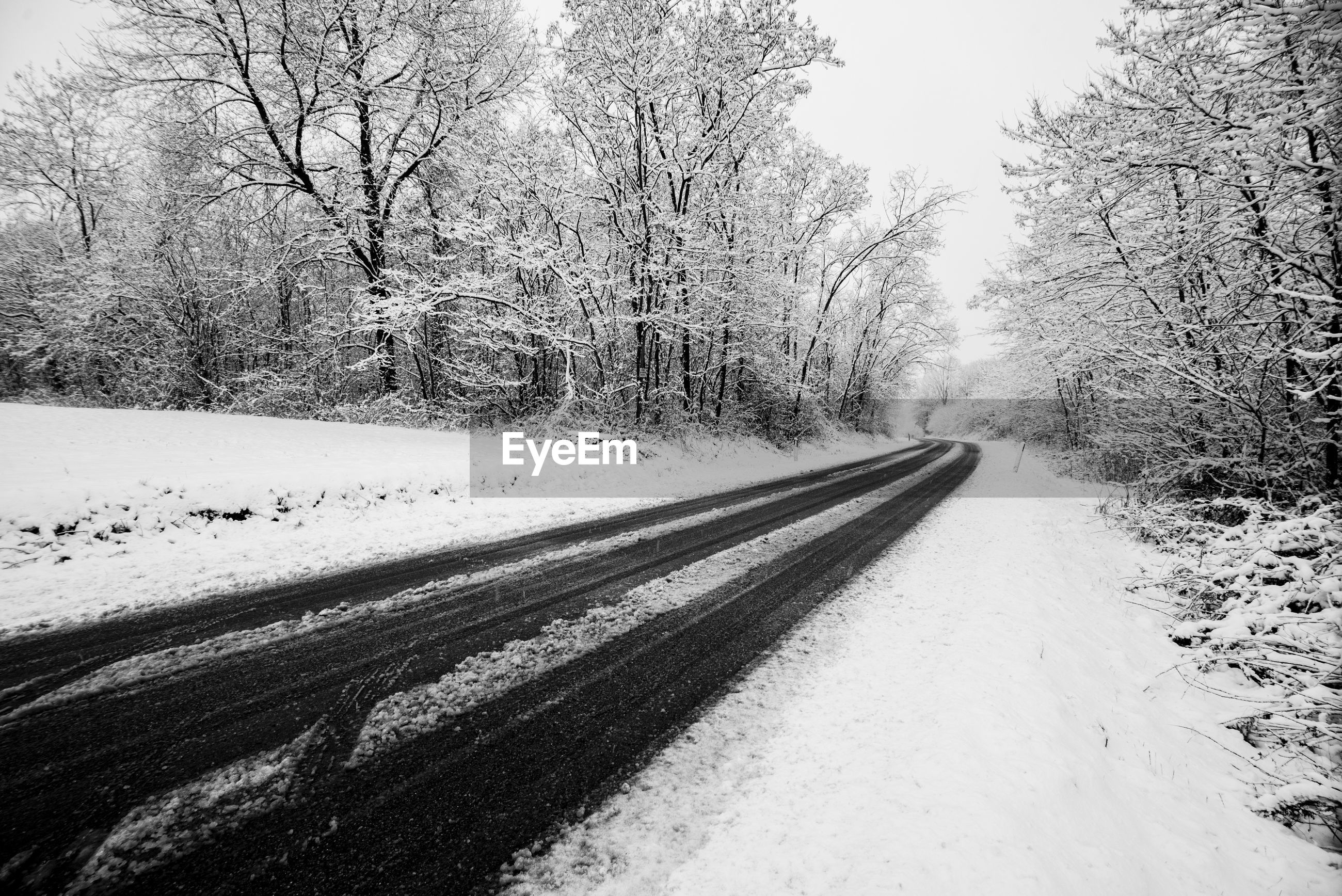 Empty road amidst snow covered bare trees