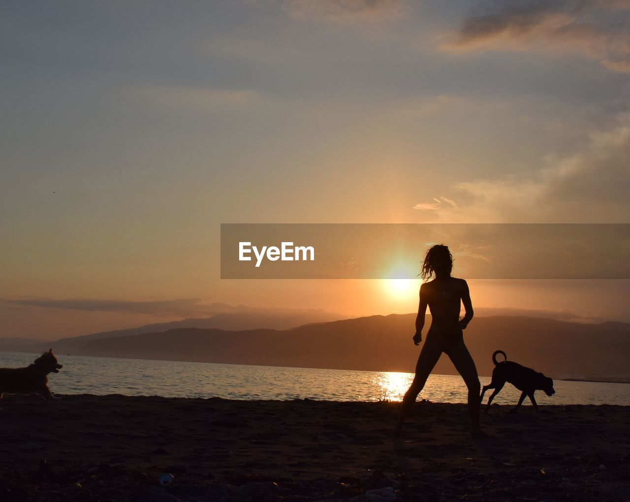sunset, silhouette, sky, water, nature, beach, sea, beauty in nature, real people, two people, dog, scenics, leisure activity, mammal, domestic animals, full length, one animal, sand, cloud - sky, lifestyles, pets, outdoors, men, horizon over water, day, people