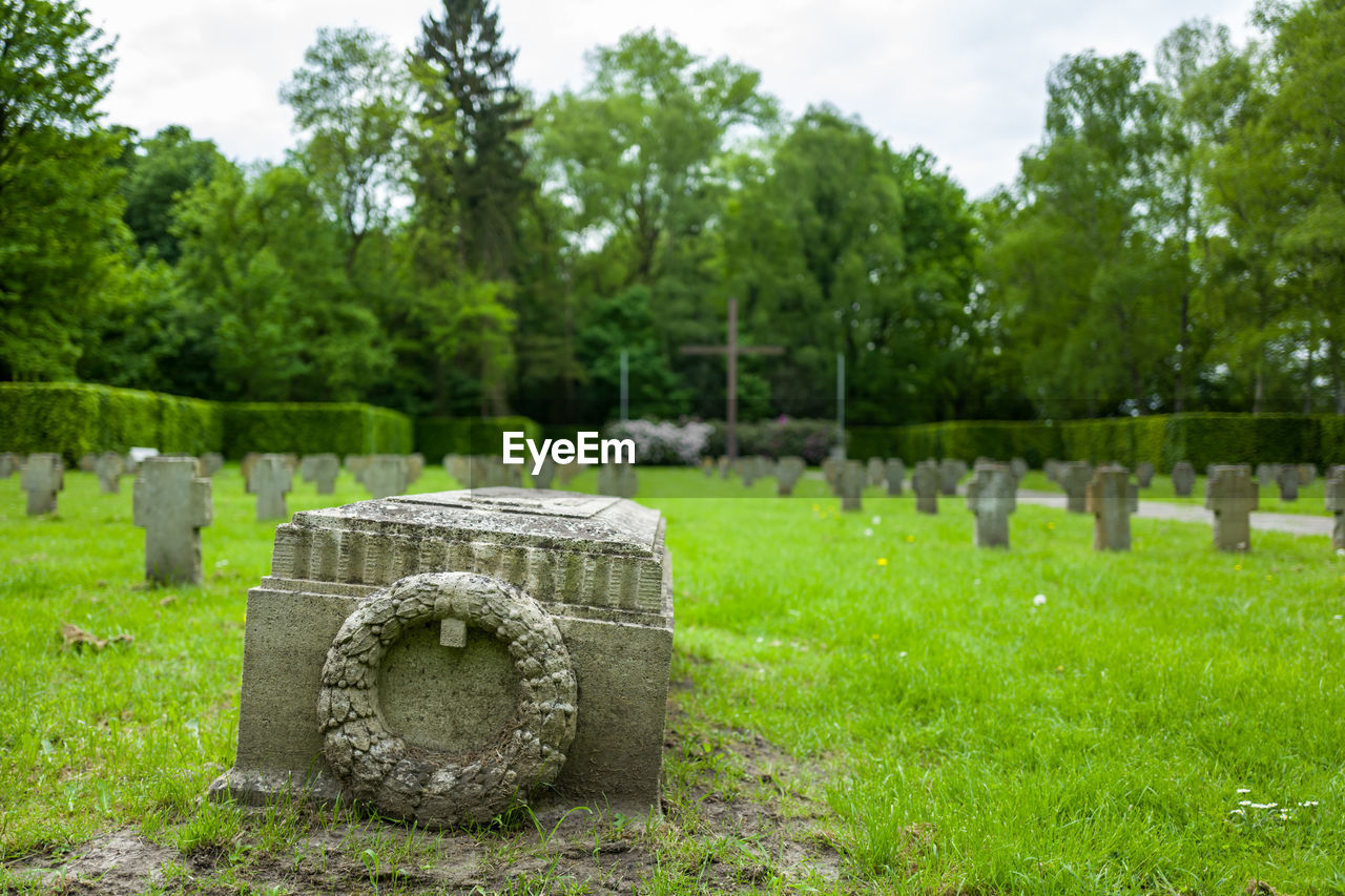 plant, grave, tombstone, cemetery, stone, tree, memorial, grass, green color, nature, solid, history, the past, day, no people, religion, stone material, emotion, outdoors