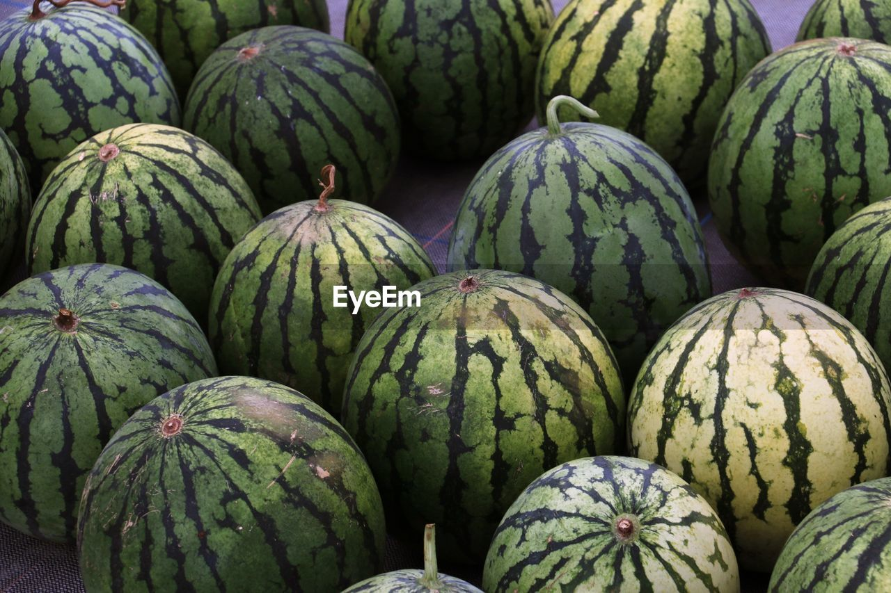 Watermelons for sale on the floor