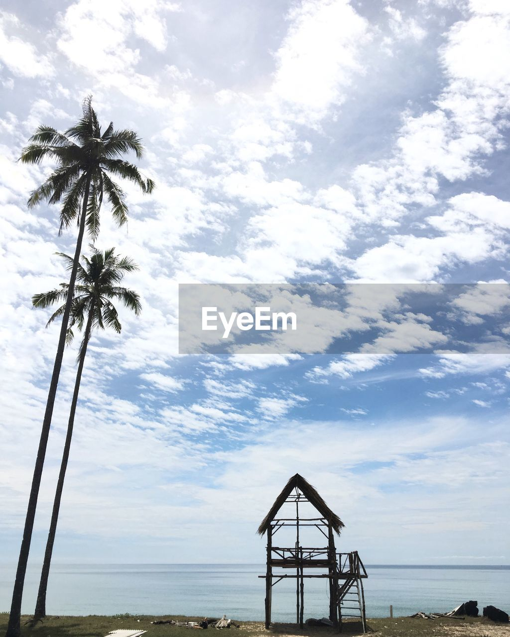 sky, palm tree, sea, beach, cloud - sky, tree, tranquil scene, water, tranquility, outdoors, no people, horizon over water, day, scenics, nature, beauty in nature