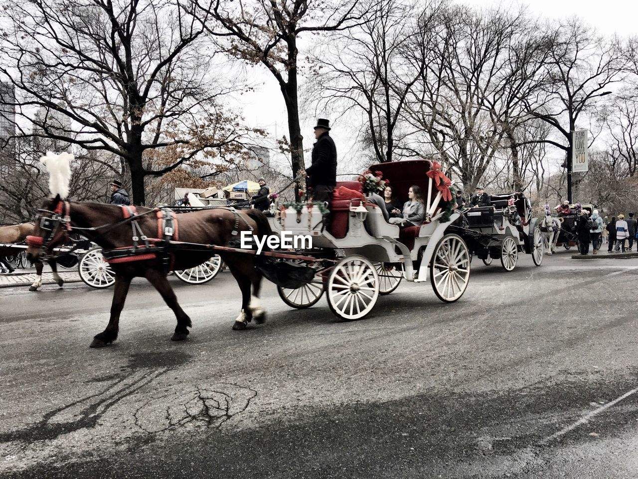 People on horse carriage