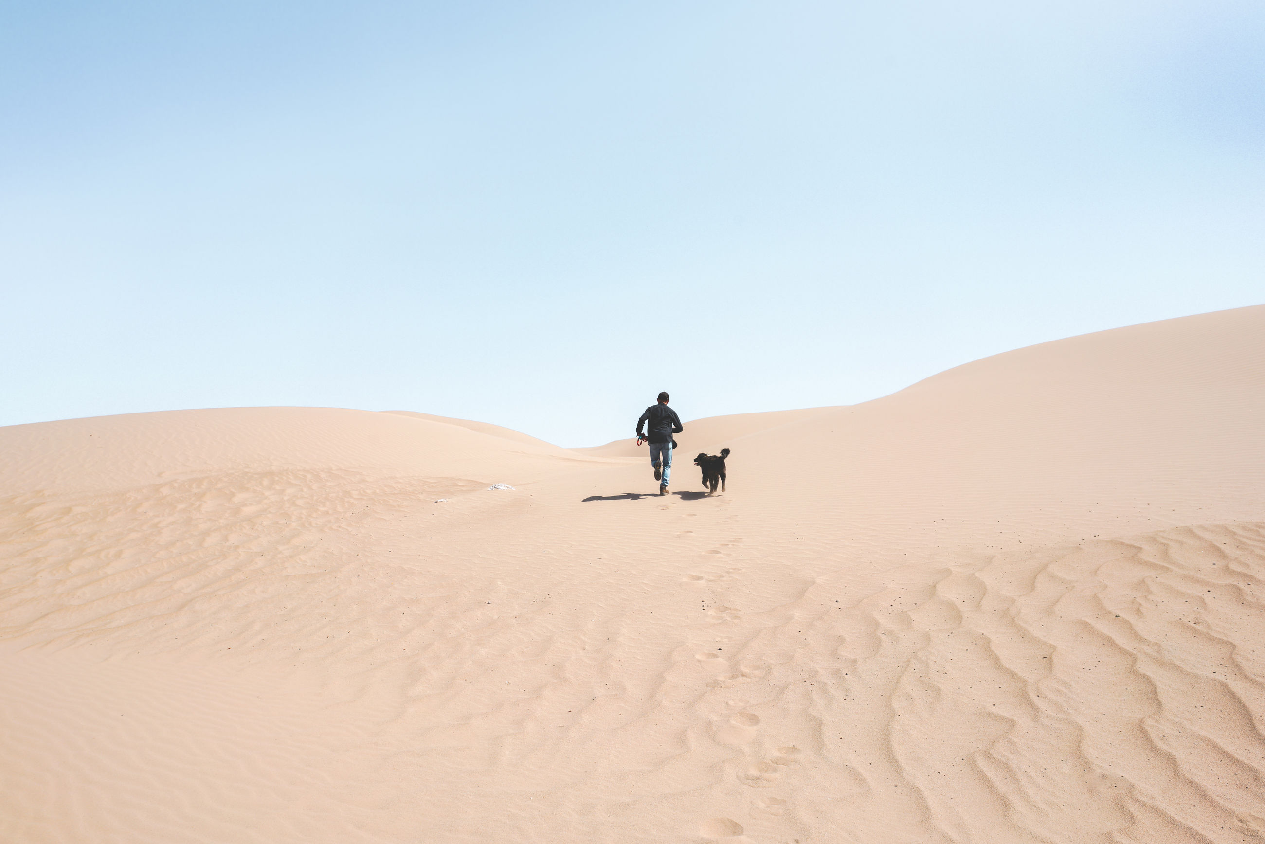 Man and dog on sand dune against clear sky