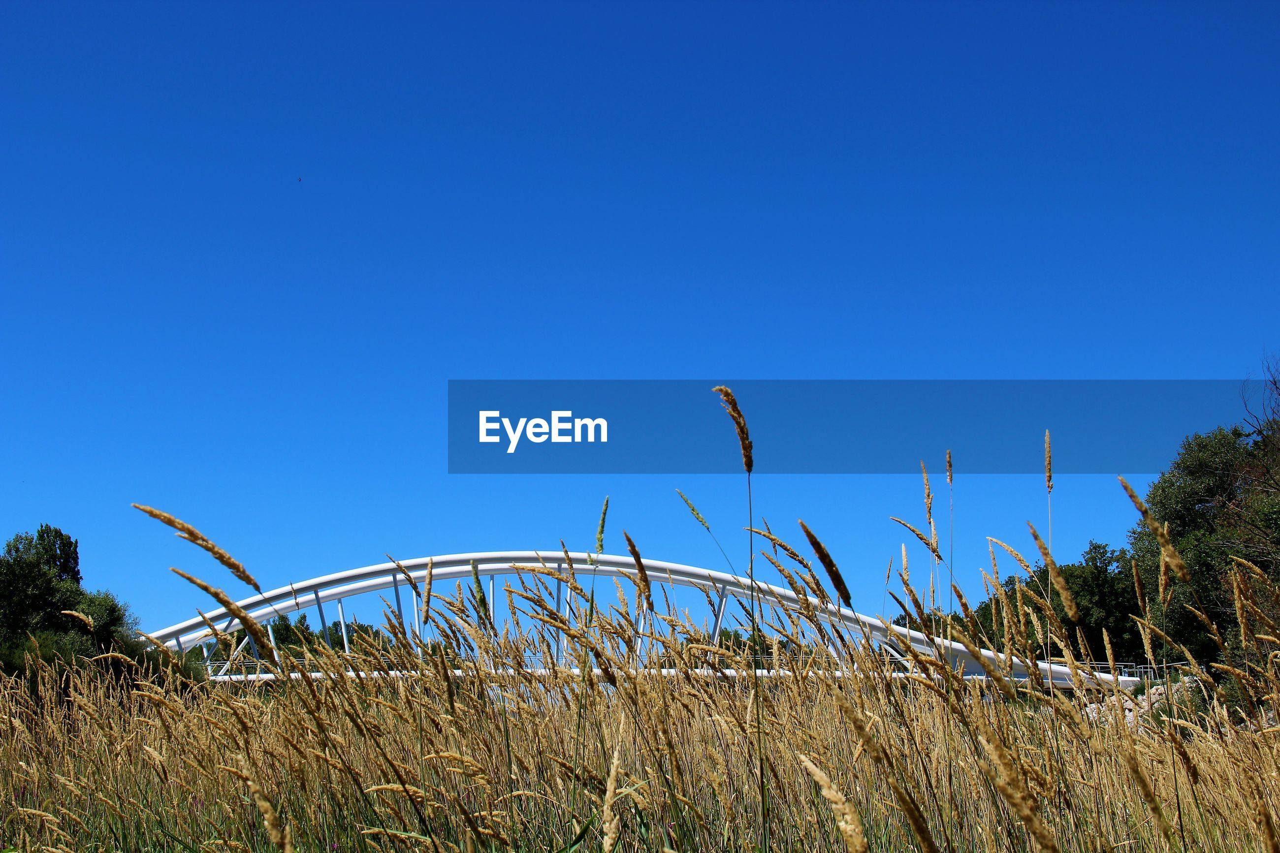 Bridge  on grass against clear blue sky