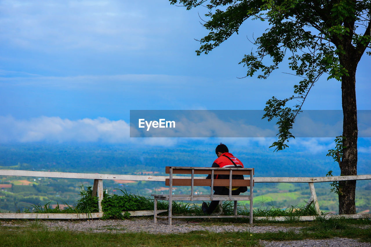plant, bench, sky, sitting, tree, seat, cloud - sky, one person, nature, real people, lifestyles, rear view, day, leisure activity, beauty in nature, adult, women, growth, outdoors, looking at view, park bench