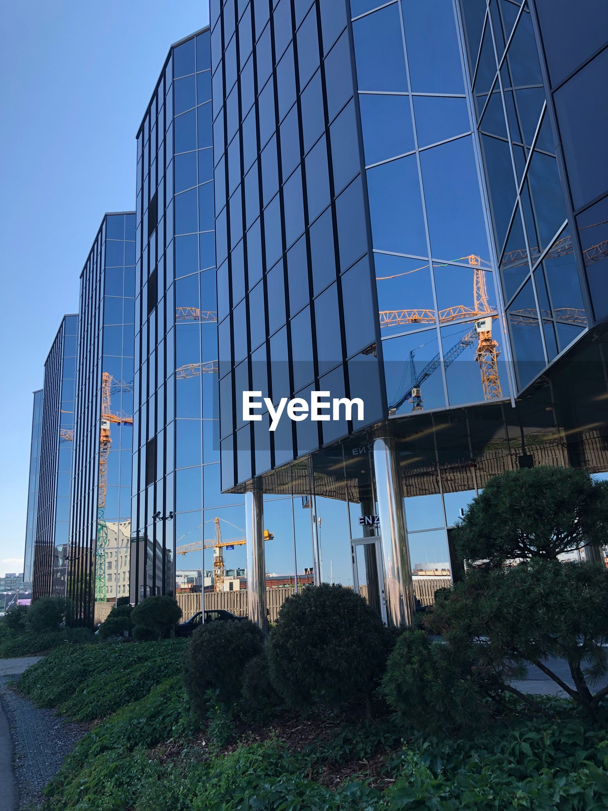 built structure, architecture, building exterior, sky, low angle view, nature, modern, plant, building, office, office building exterior, no people, city, clear sky, glass - material, day, reflection, outdoors, tree, blue, skyscraper