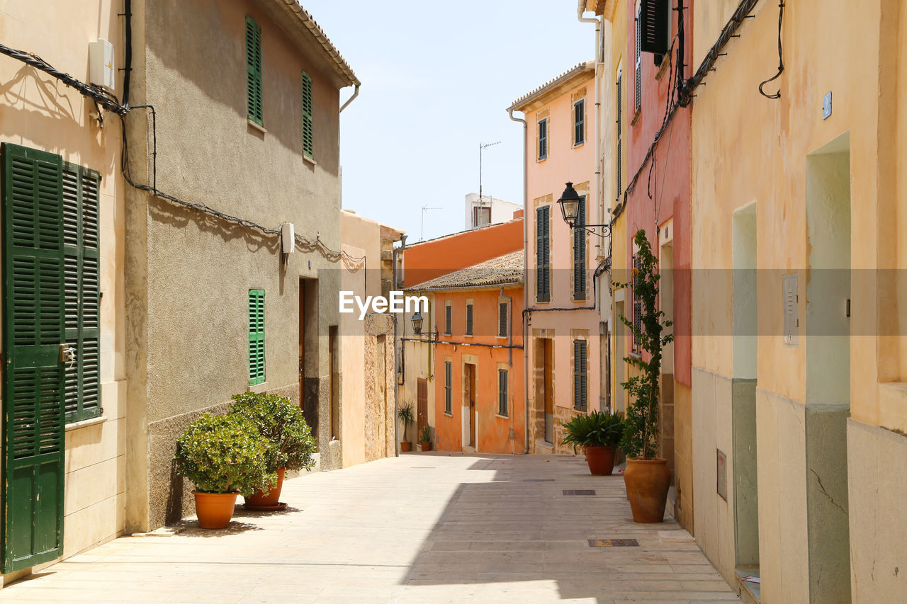 architecture, building exterior, built structure, plant, alley, no people, outdoors, day