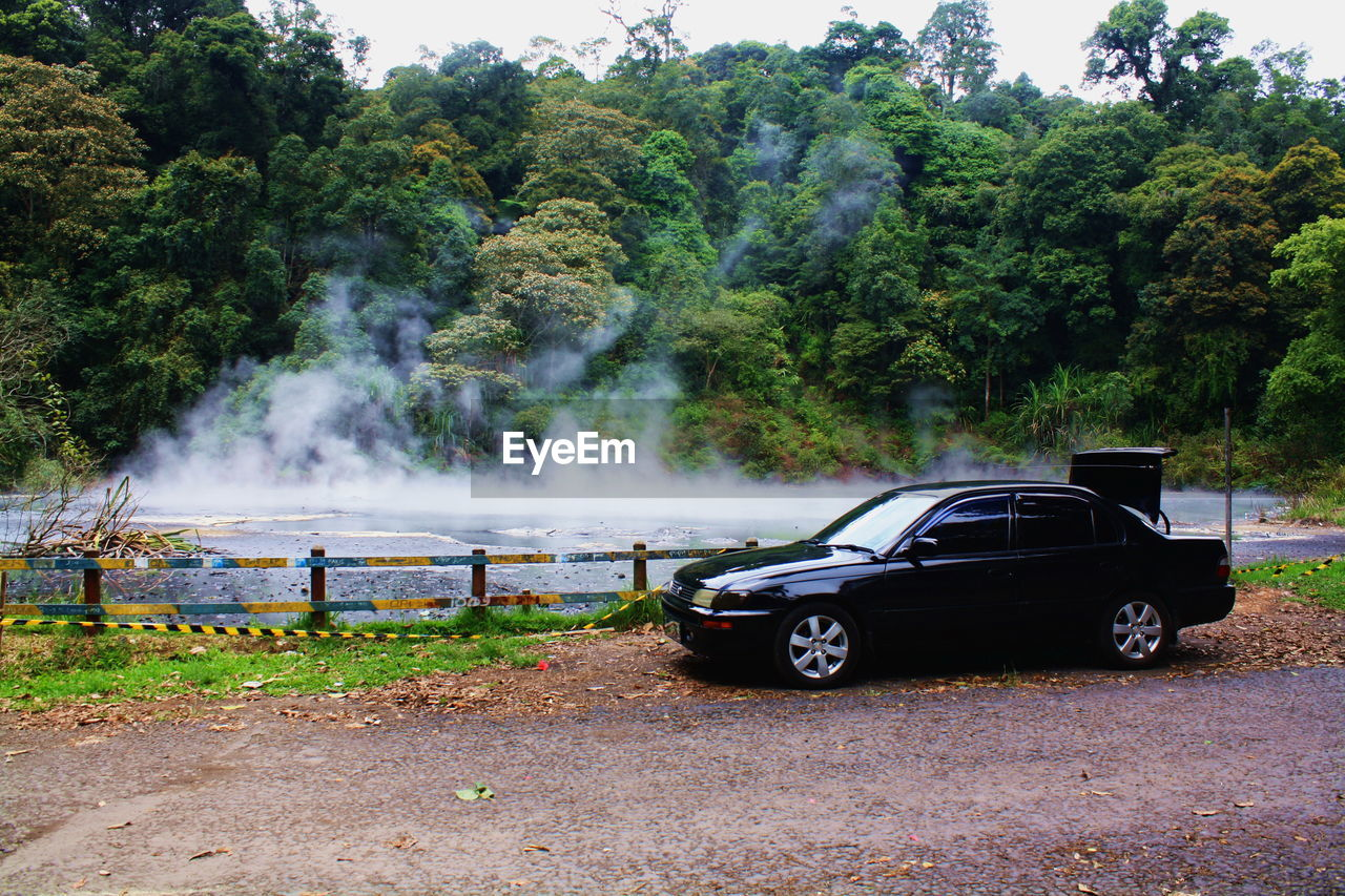 car, tree, smoke - physical structure, transportation, day, land vehicle, outdoors, no people, growth, nature, water, beauty in nature