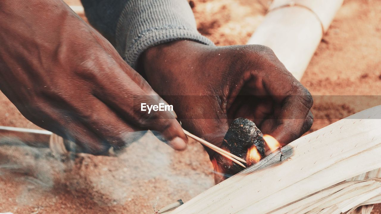 human hand, one person, real people, hand, working, men, human body part, day, wood - material, holding, occupation, animal wildlife, skill, animals in the wild, vertebrate, one animal, outdoors, finger