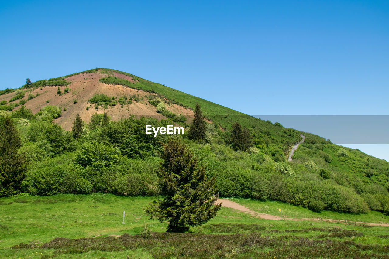 SCENIC VIEW OF LANDSCAPE AGAINST CLEAR SKY