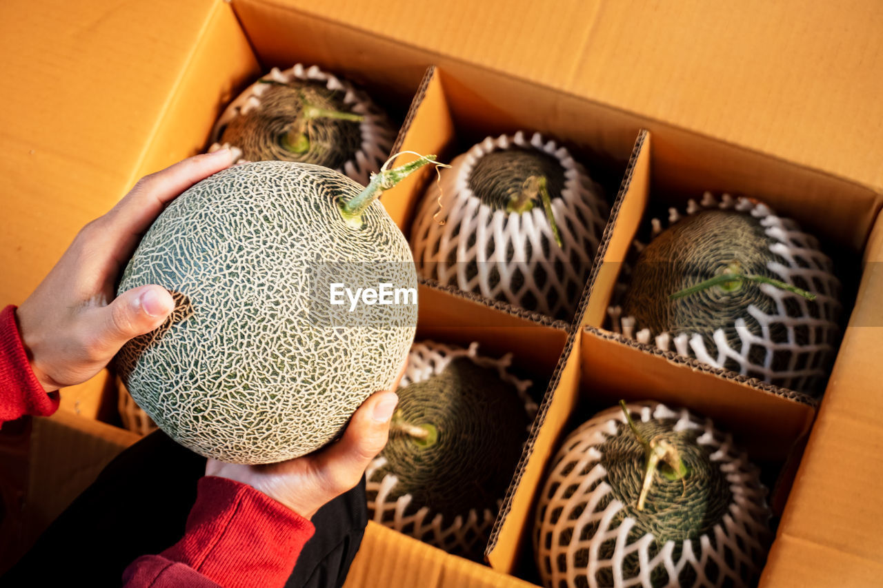 Cropped hands holding cantaloupe above box