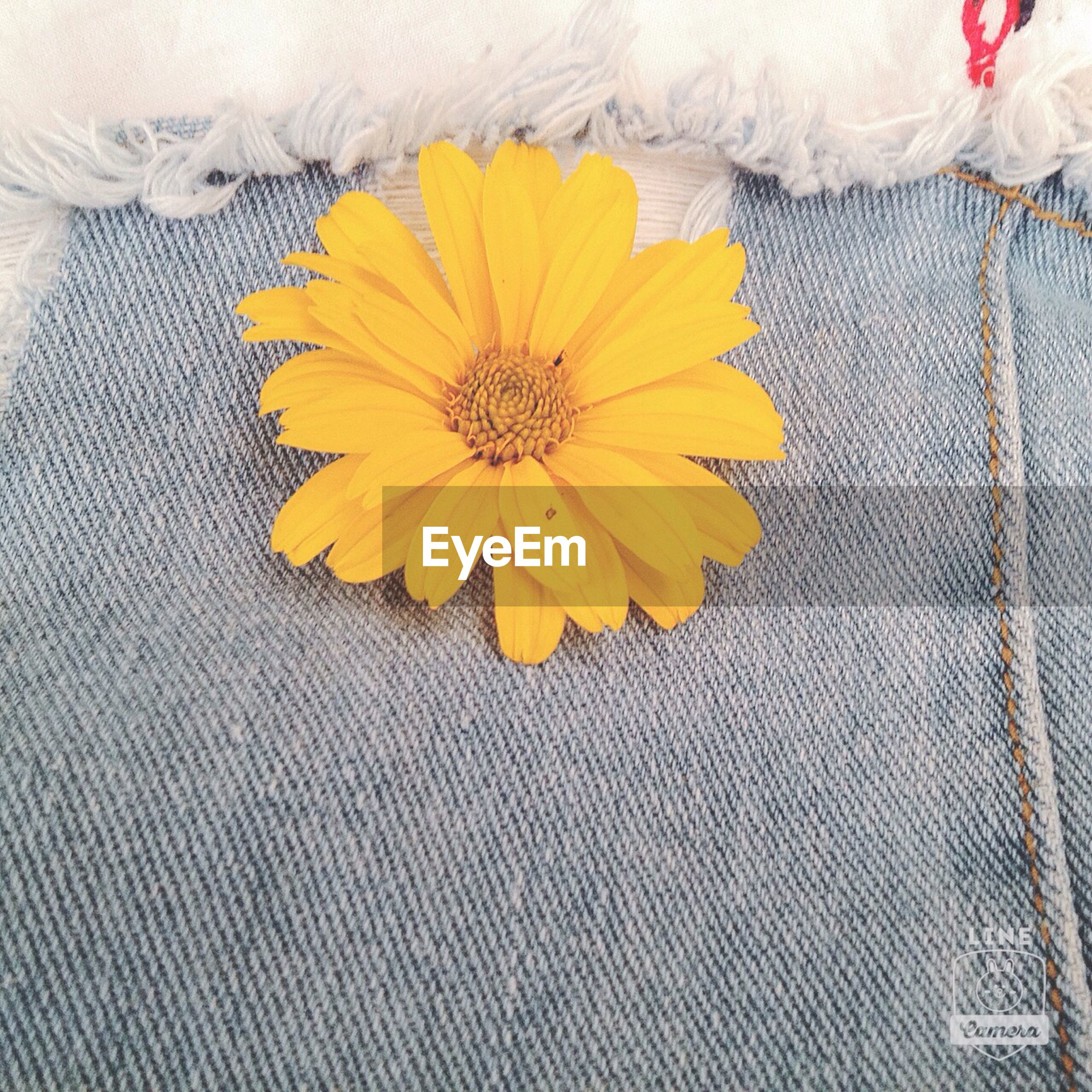 indoors, high angle view, flower, yellow, petal, freshness, multi colored, table, textile, directly above, still life, close-up, fabric, fragility, bed, floral pattern, no people, home interior, white color, flower head