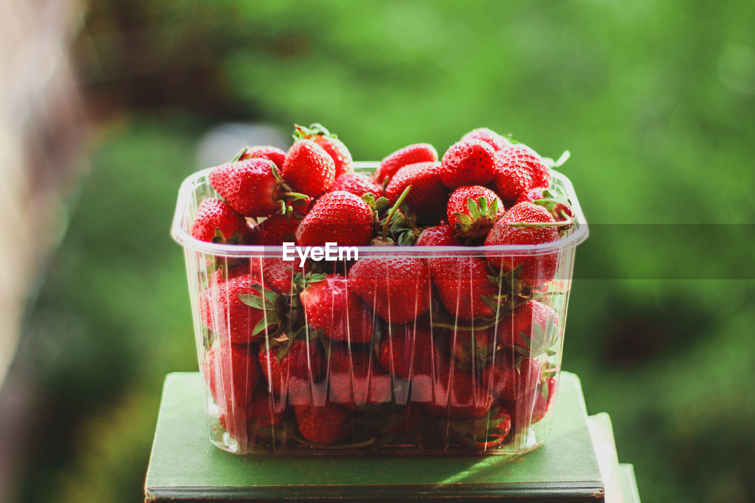Close-up of strawberries in plastic container