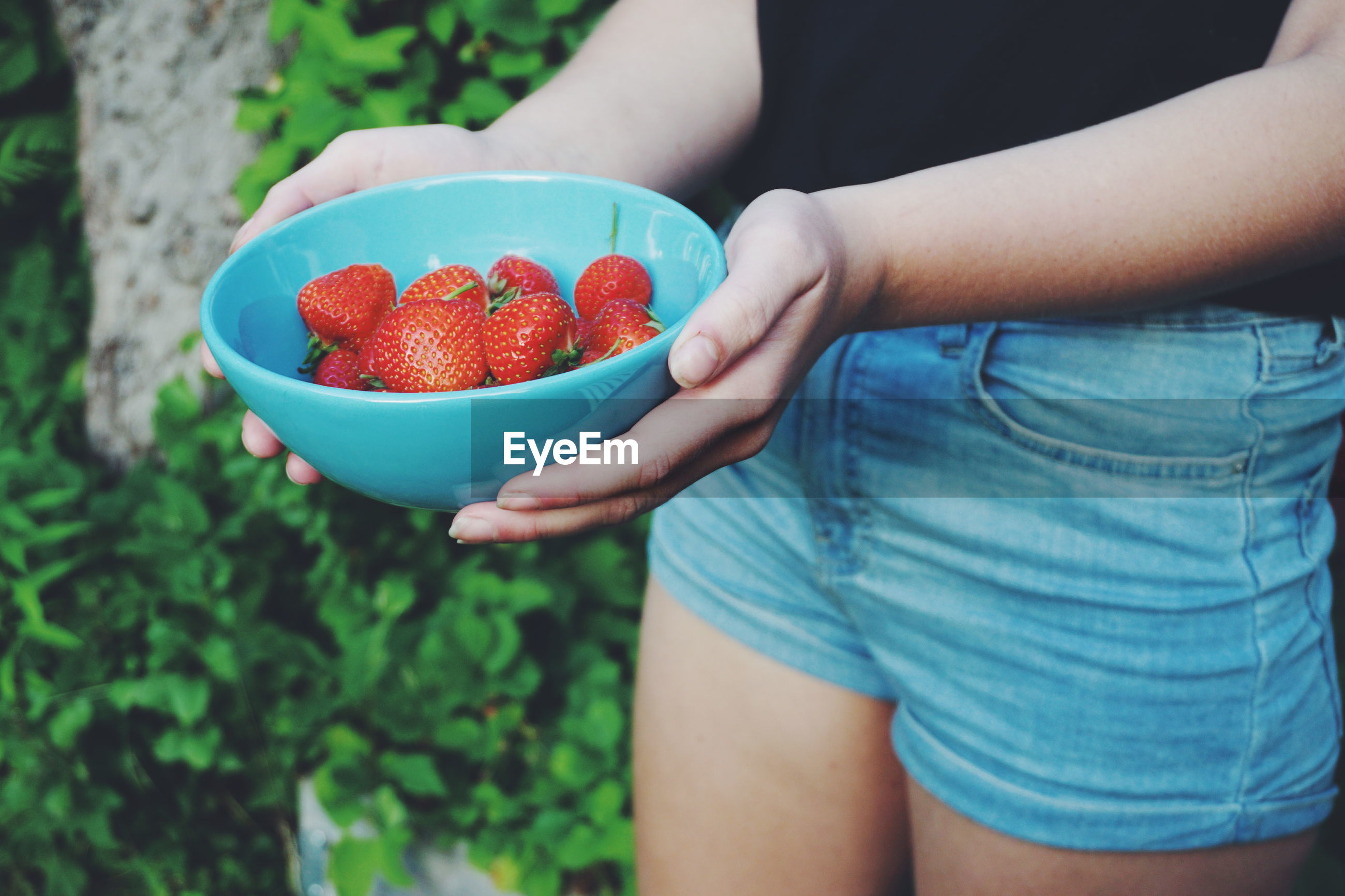 Midsection of woman holding strawberries in bowl