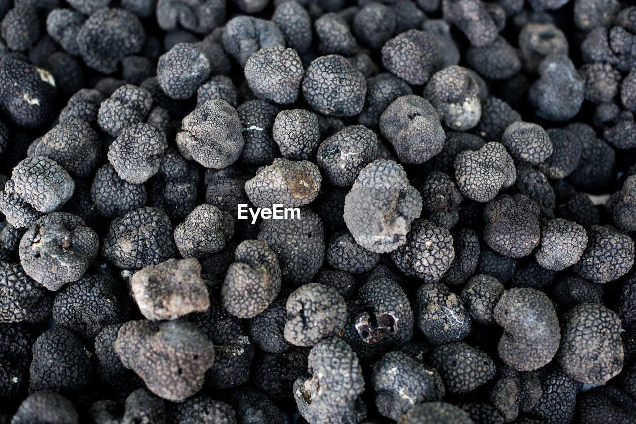 Full Frame Shot Of Black Truffles