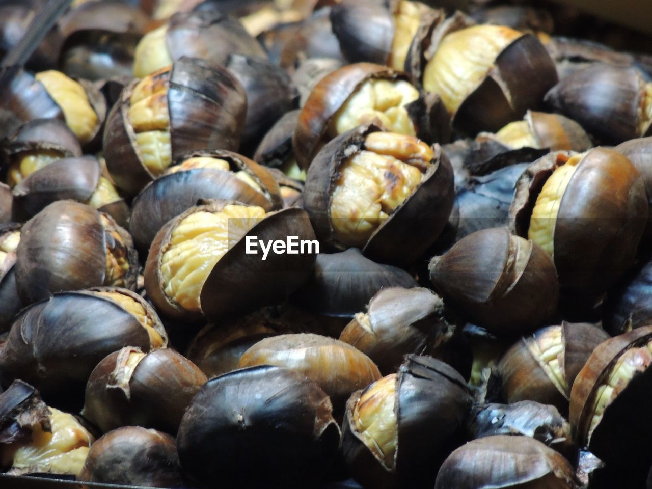 food and drink, food, wellbeing, healthy eating, freshness, full frame, seafood, still life, large group of objects, close-up, backgrounds, abundance, no people, shell, day, for sale, market, mussel, indoors, high angle view