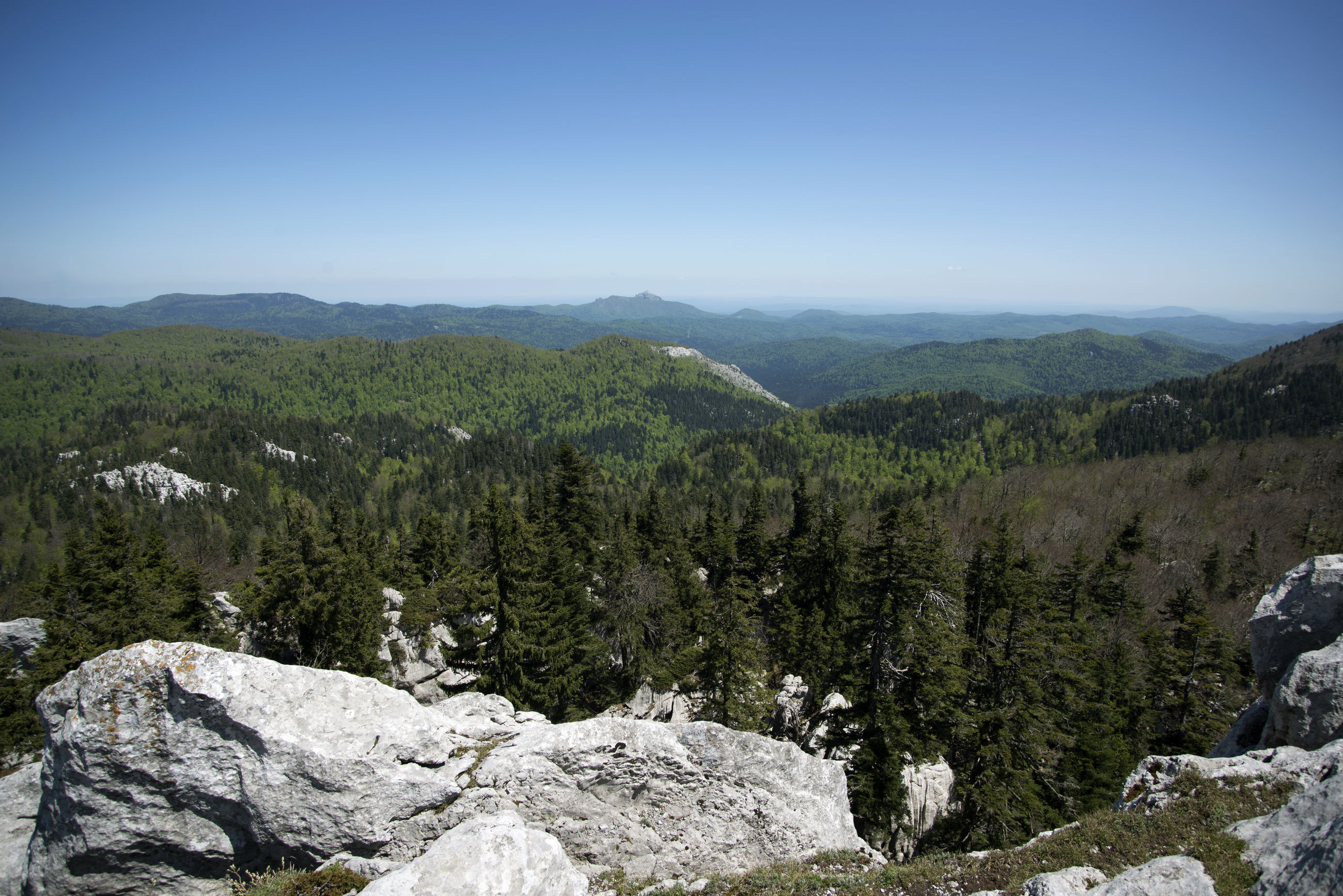 SCENIC VIEW OF LANDSCAPE AND MOUNTAINS AGAINST CLEAR SKY