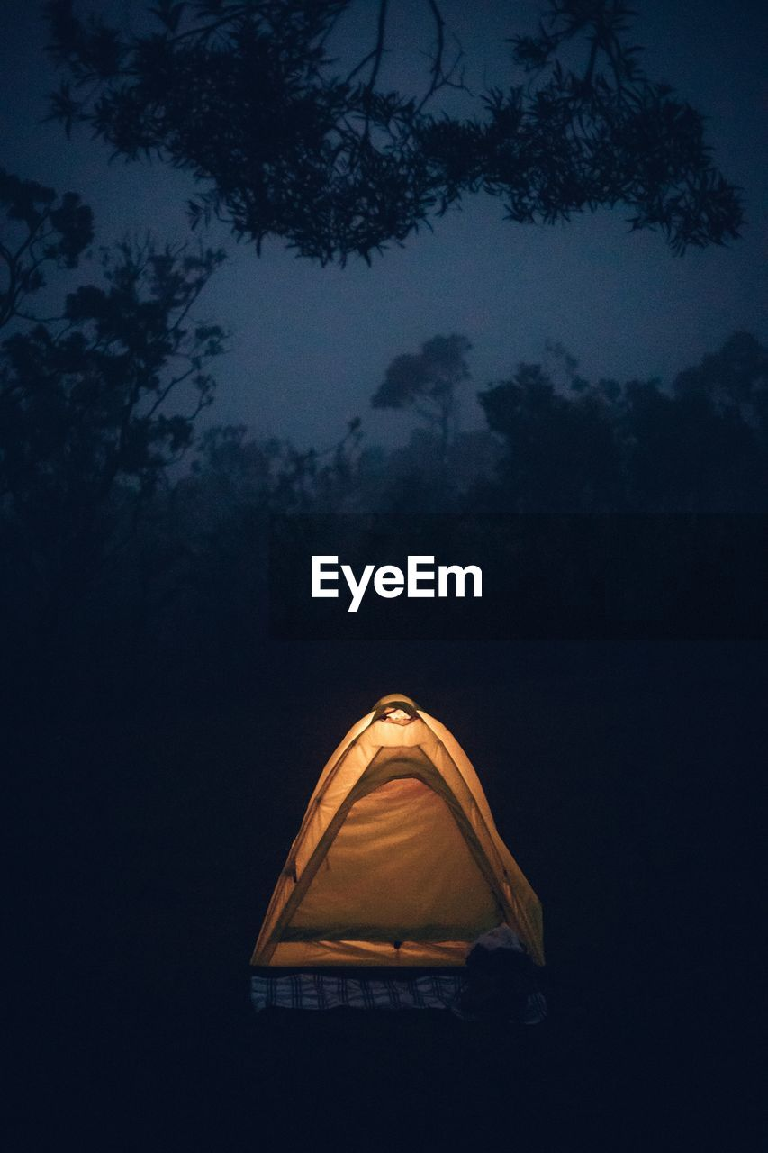 sky, tree, night, plant, nature, no people, illuminated, cloud - sky, tent, dark, beauty in nature, camping, dusk, outdoors, low angle view, silhouette, tranquility, lighting equipment, scenics - nature