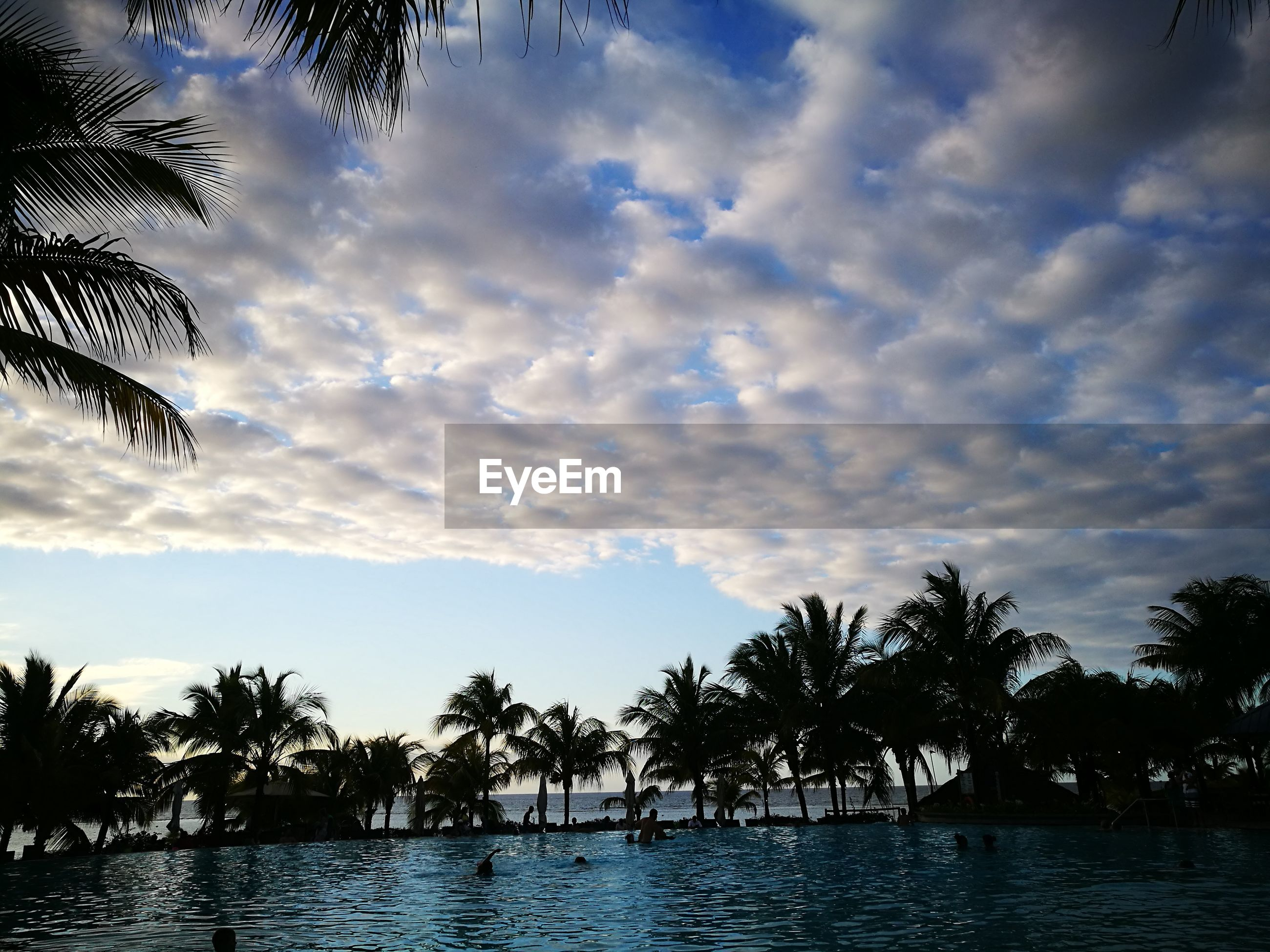 sky, cloud - sky, tree, sunset, nature, outdoors, water, no people, beauty in nature, silhouette, palm tree, day