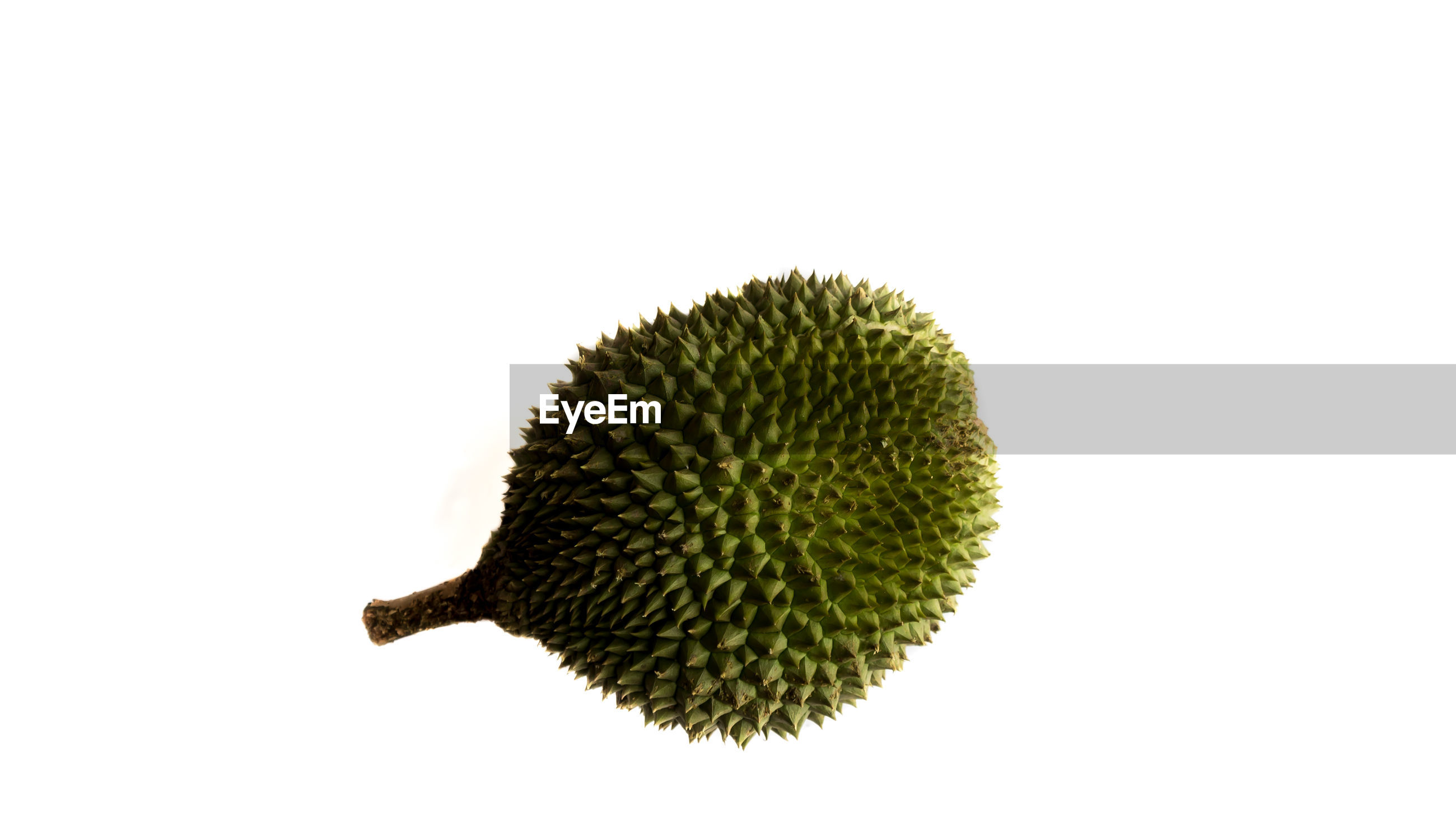 Close-up of durian against white background
