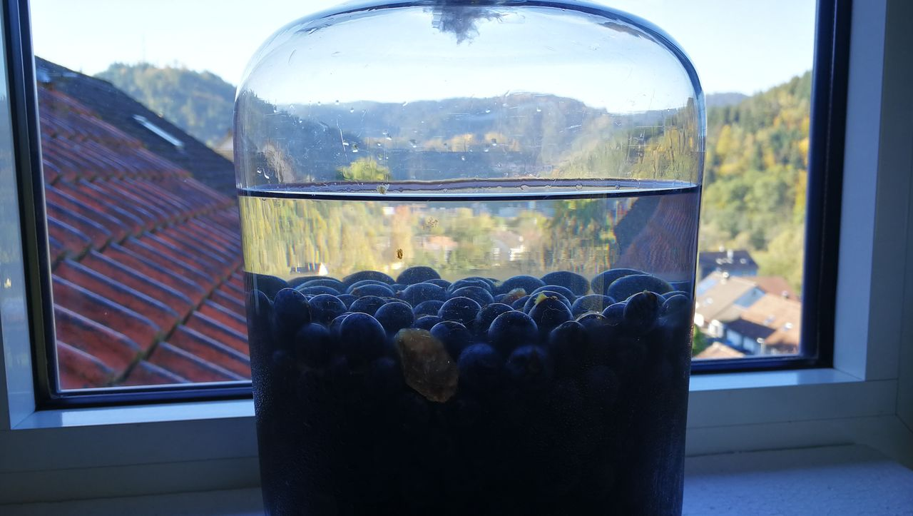 Close-Up Of Blueberries In Container On Window Sill At Home