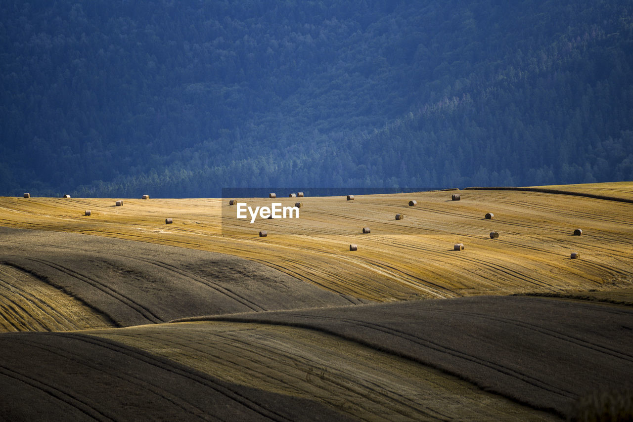 High angle view of hay bales on field against sky