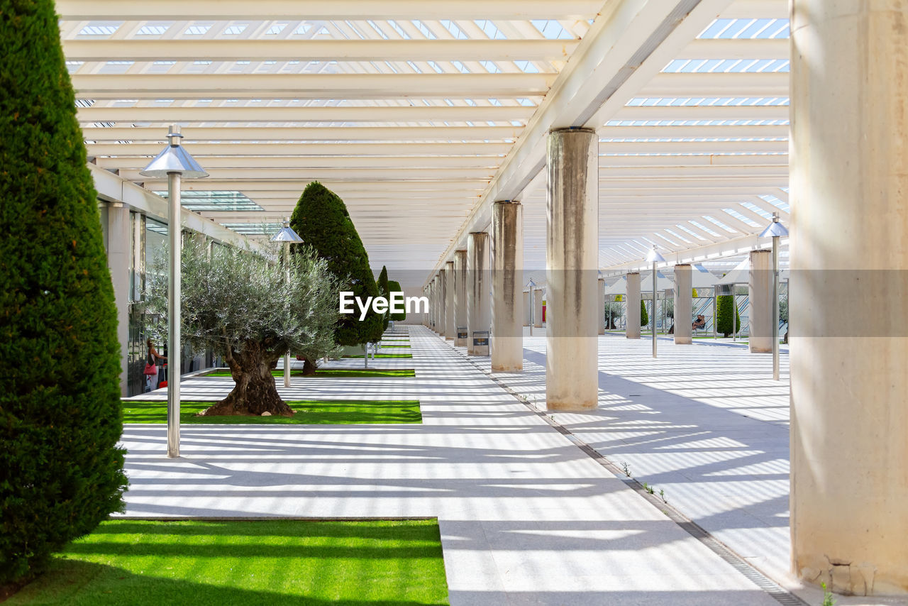 architecture, built structure, architectural column, sunlight, plant, direction, the way forward, nature, shadow, no people, day, footpath, tree, empty, building, absence, corridor, outdoors, building exterior, arcade, ceiling, colonnade, long
