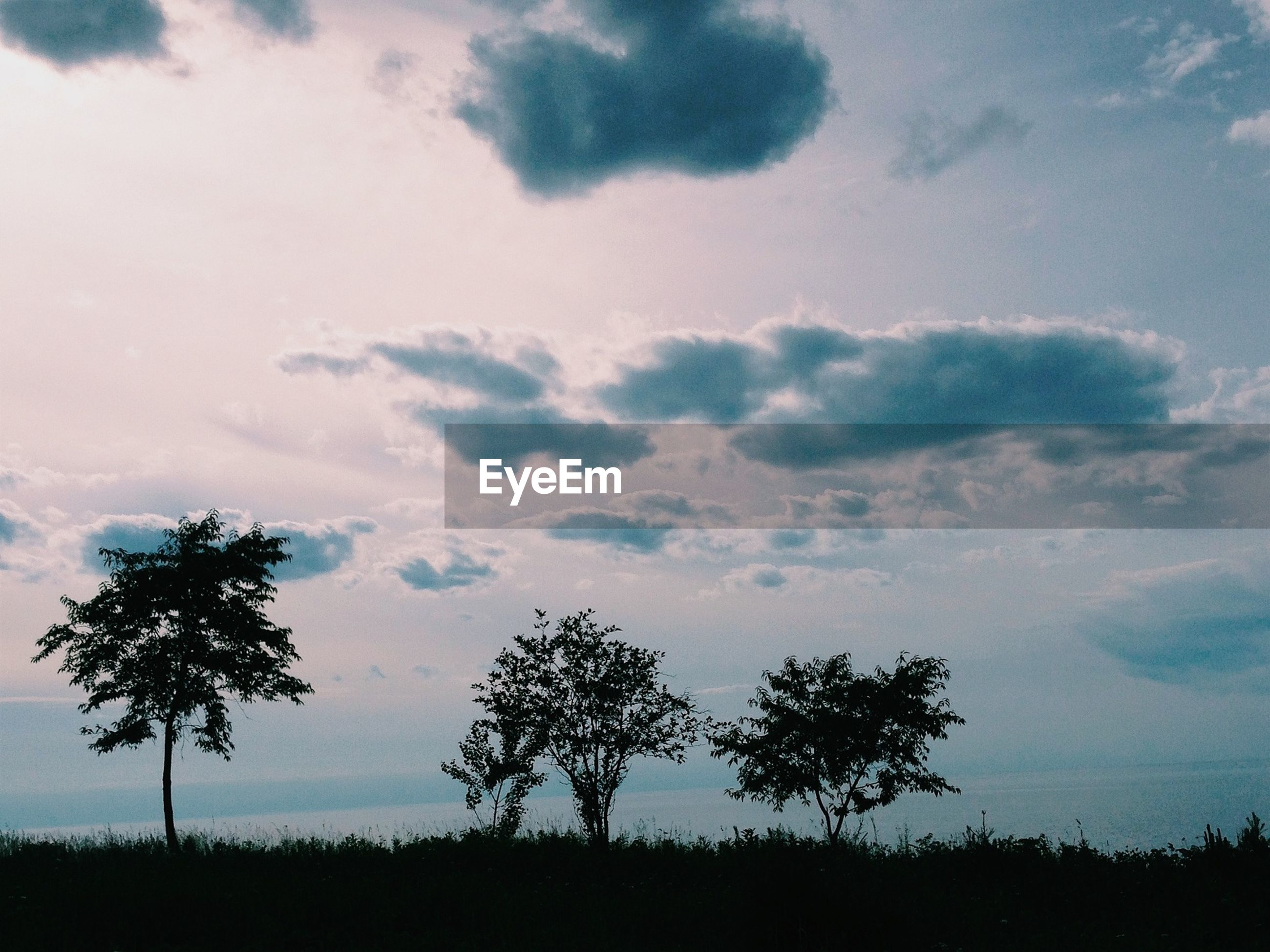 Scenic view of silhouette trees on field against sky during sunset