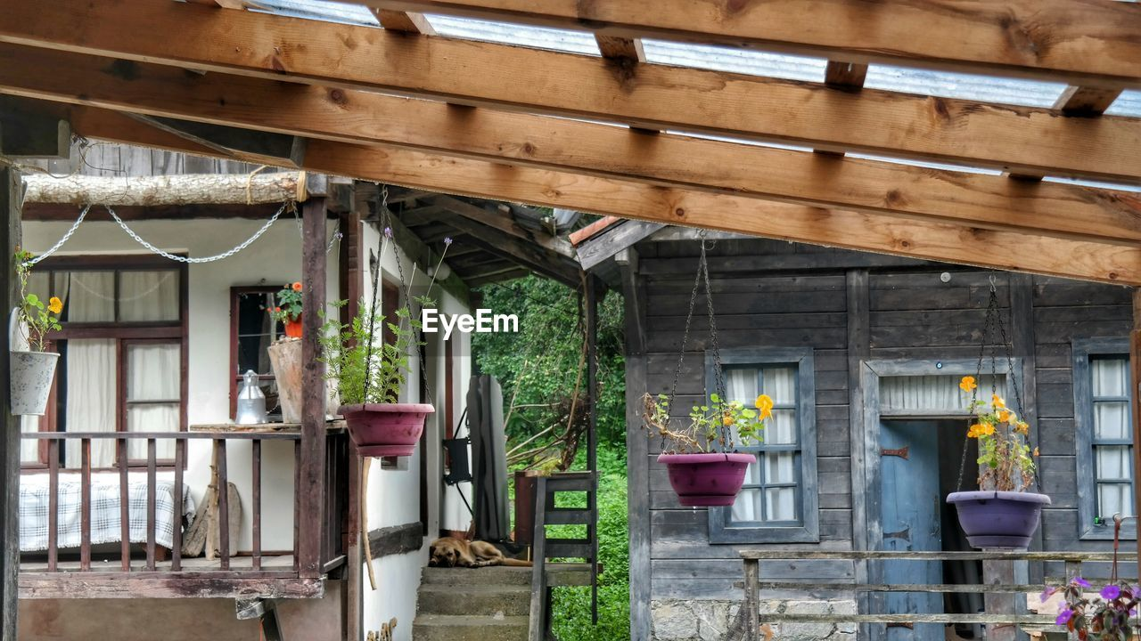 architecture, built structure, building exterior, building, no people, plant, house, day, window, wood - material, residential district, roof, outdoors, nature, growth, potted plant, low angle view, flowering plant, glass - material, restaurant, roof beam