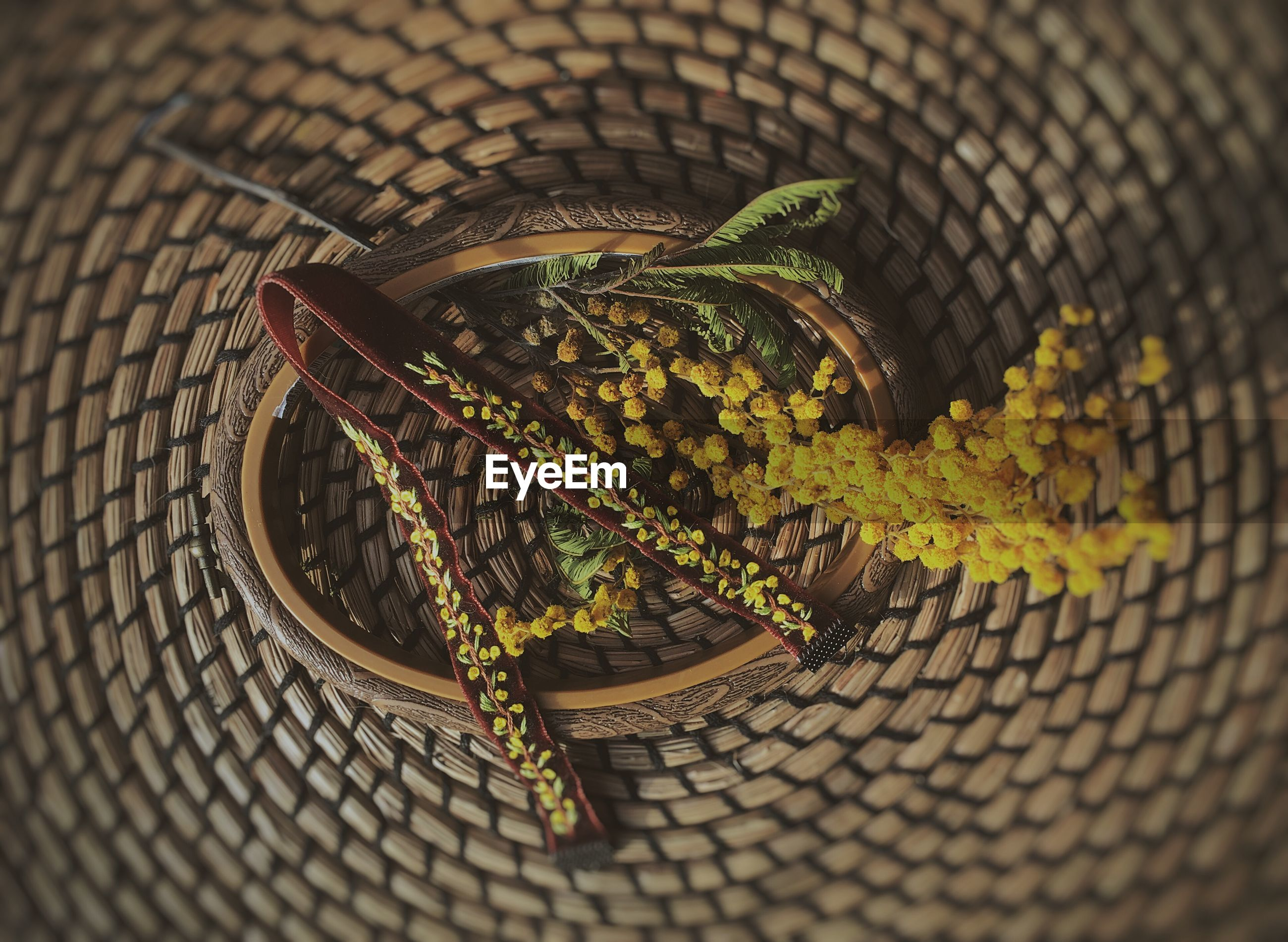 HIGH ANGLE VIEW OF A LIZARD ON BASKET